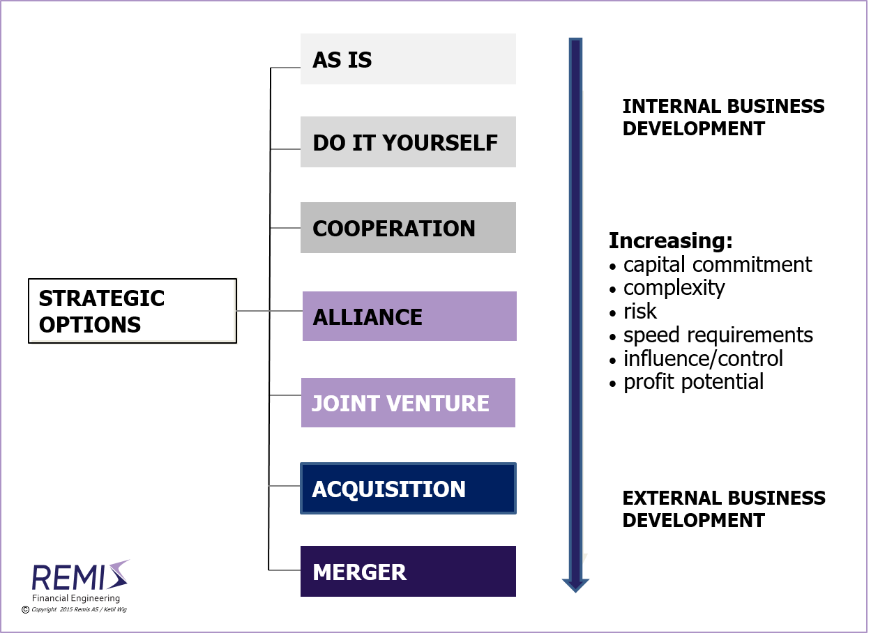 joint ventures strategic alliances and mergers Joint ventures and strategic alliances allow companies with complementary skills  to benefit from one another's strengths they are common in technology,.